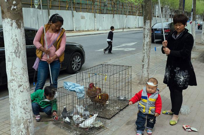 fotografo-autodidatta-cinese-scene-di-strada-divertenti-19