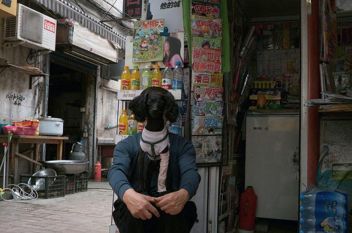 fotografo-autodidatta-cinese-scene-di-strada-divertenti-24
