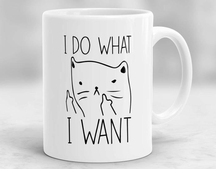 41 idee regalo per gli amanti dei gatti