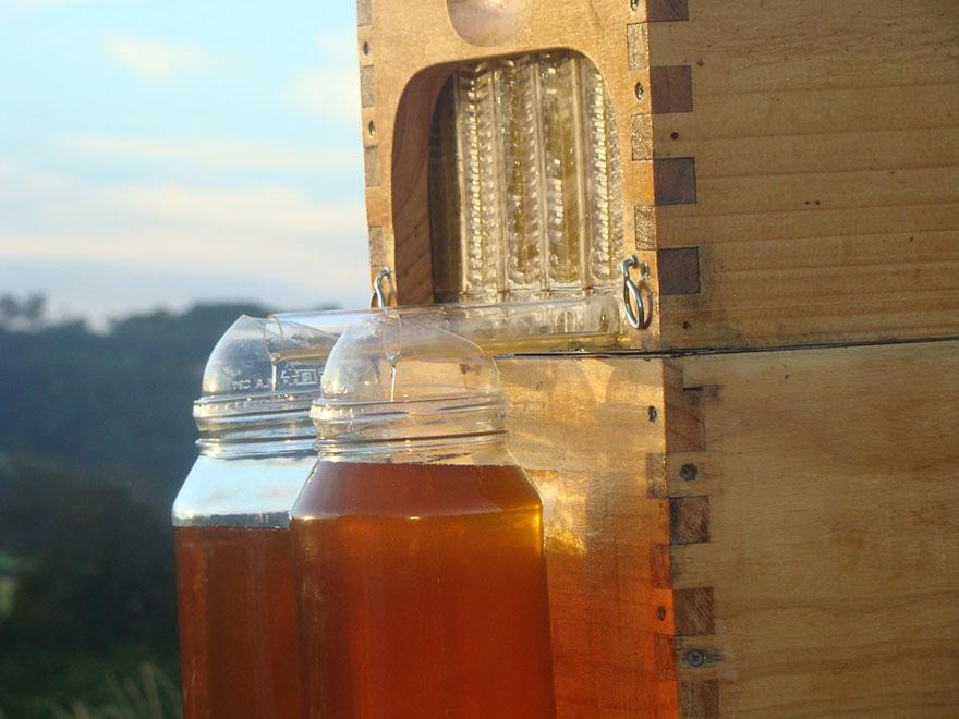 arnia-api-miele-invenzione-rubinetto-1