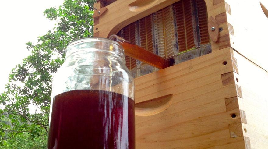arnia-api-miele-invenzione-rubinetto-4