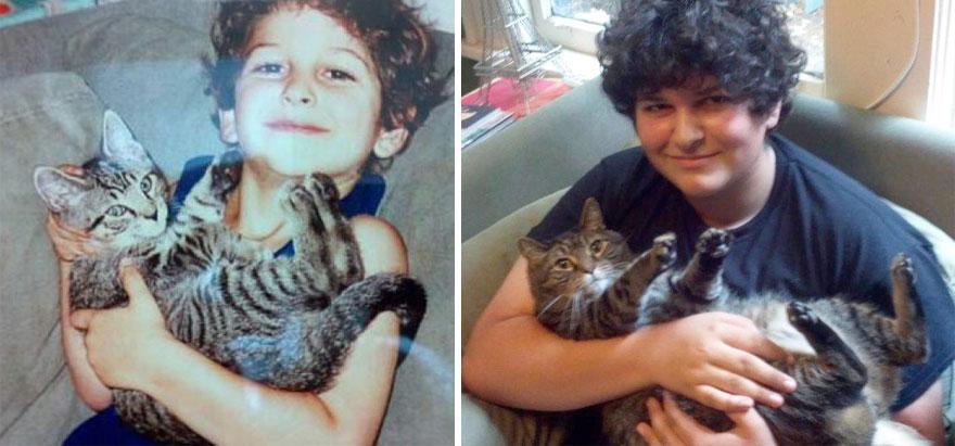 foto-di-gatti-che-crescono-prima-e-dopo-08