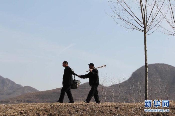 amici-anziani-cieco-disabile-senza-braccia-piantano-10000-alberi-cina-04
