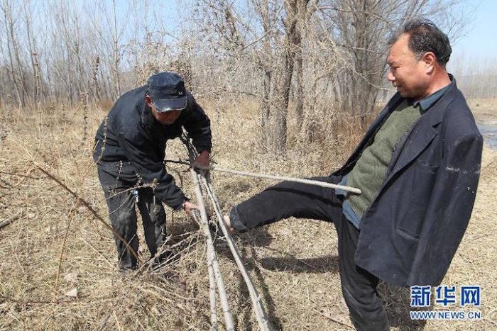 amici-anziani-cieco-disabile-senza-braccia-piantano-10000-alberi-cina-09