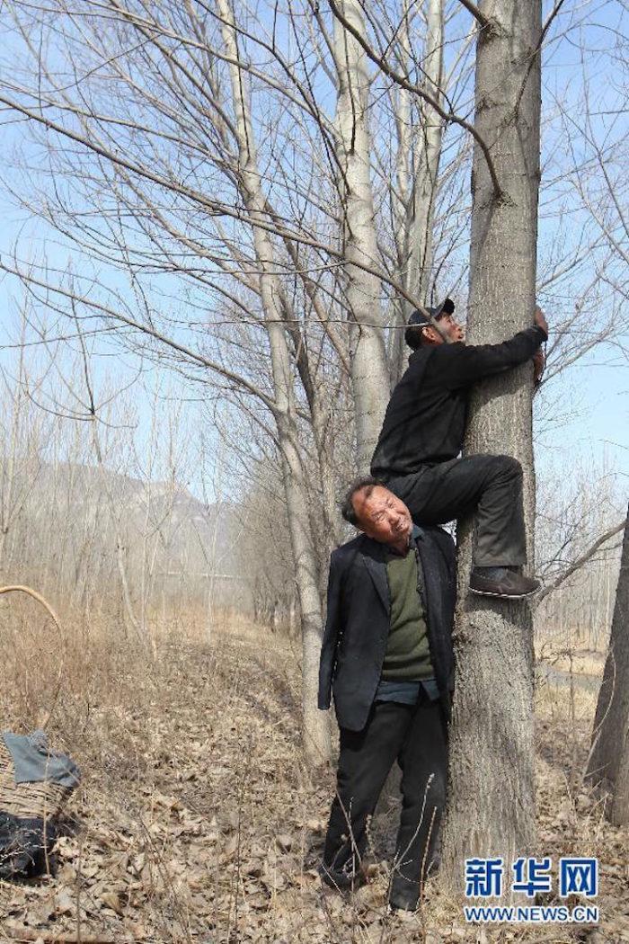 amici-anziani-cieco-disabile-senza-braccia-piantano-10000-alberi-cina-11
