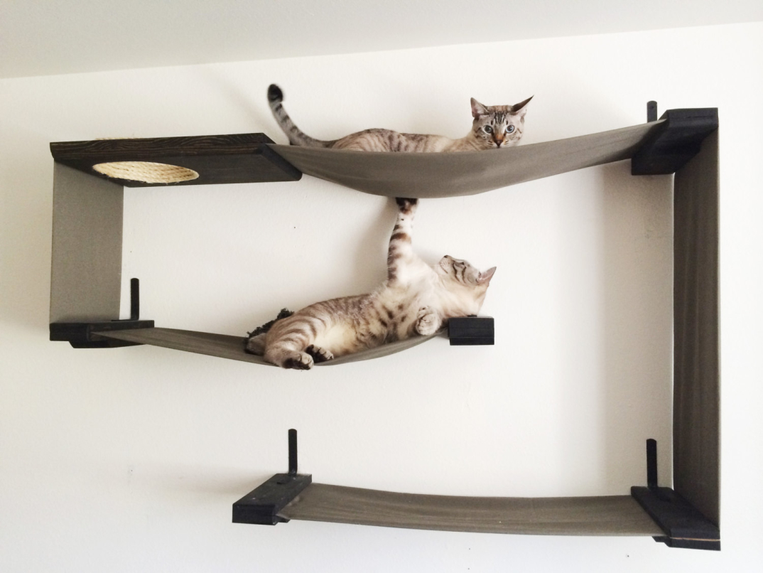 Se volete sapere di più di questi mobili per gatti, visitate lo shop ...