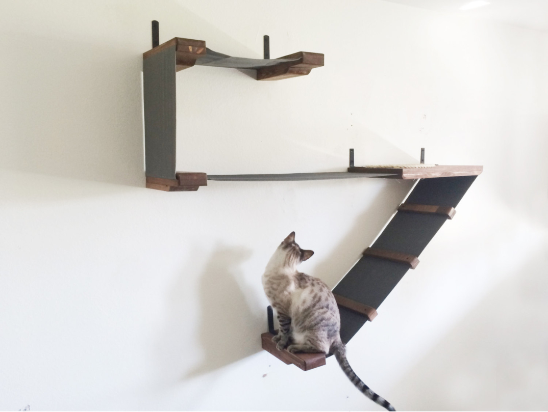 Percorsi per gatti con tanto di lettini e tiragraffi che for Tiragraffi per gatti ikea