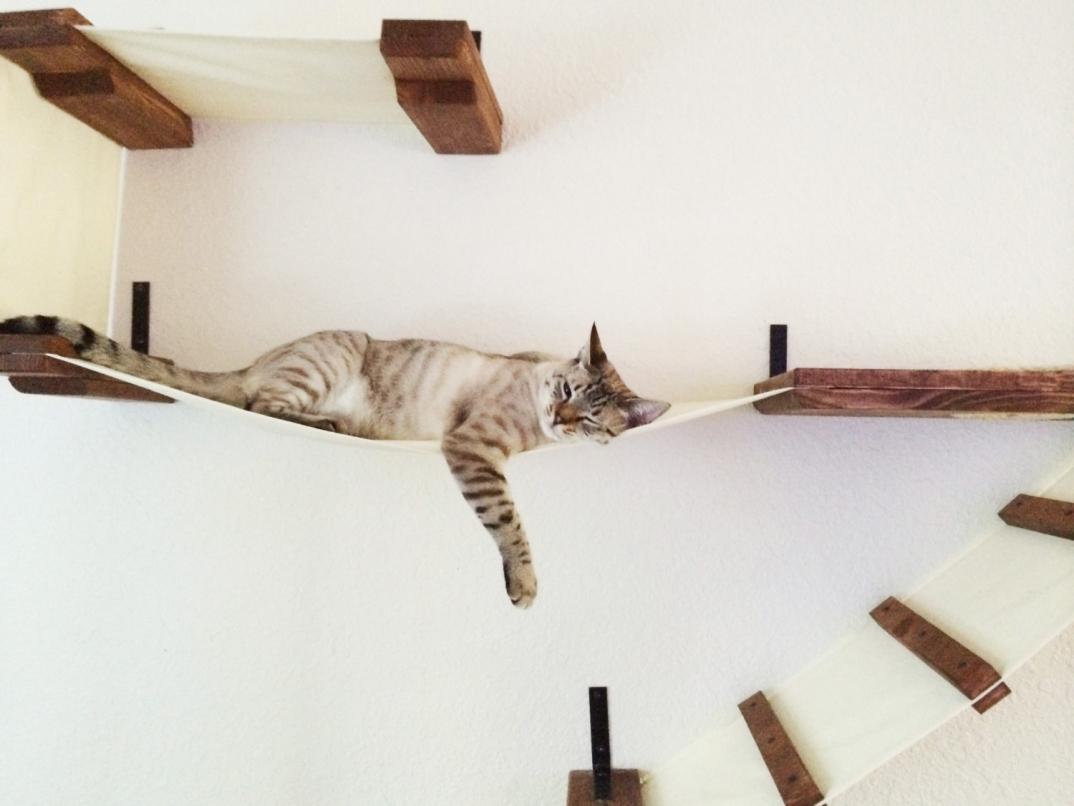 Percorsi per gatti con tanto di lettini e tiragraffi che - Lettini con sbarre ikea ...