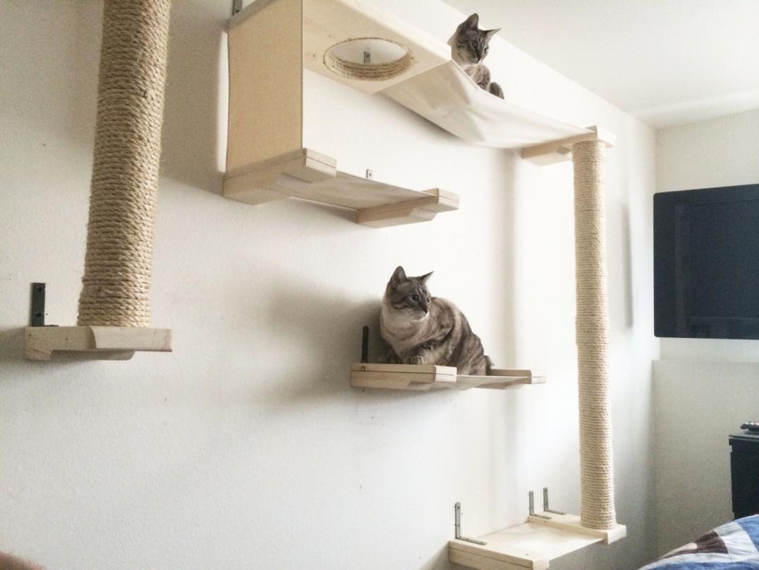 Mobili per gatti percorsi lettini tiragraffi amaca parete for Parete attrezzata gatti