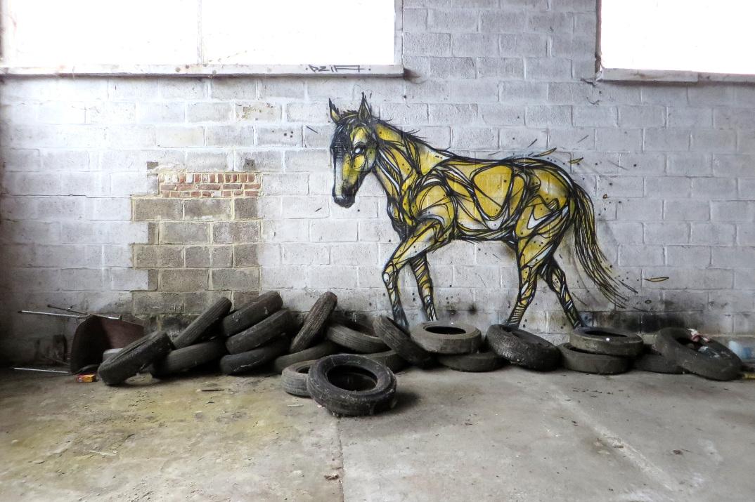 street-art-animali-dzia-03