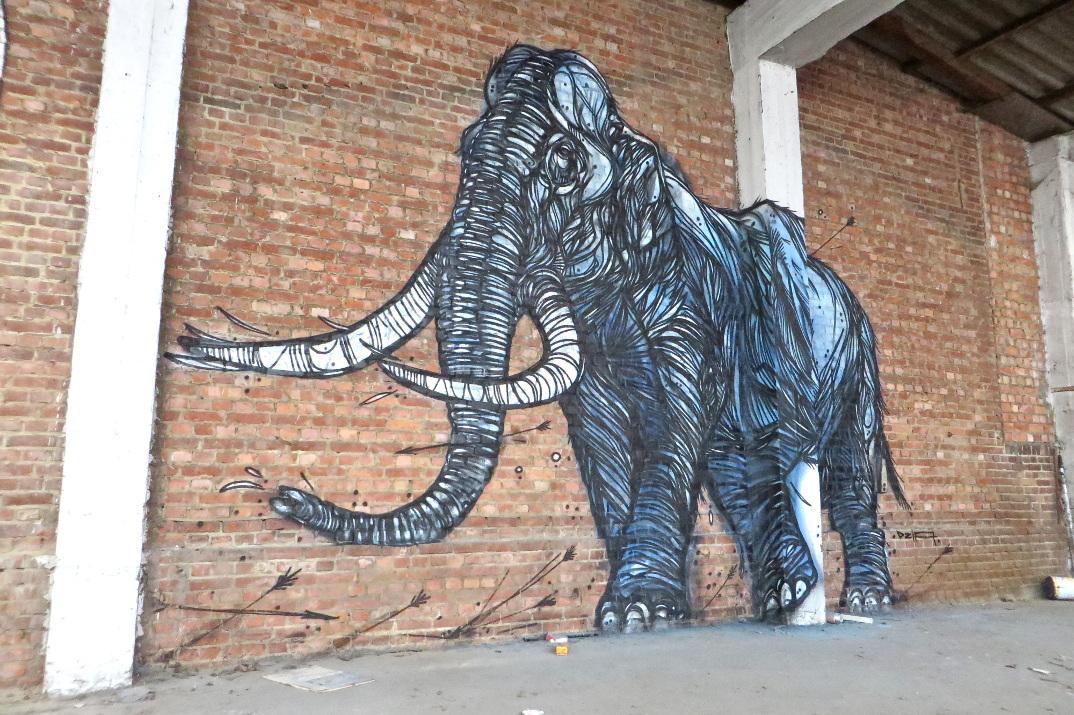 street-art-animali-dzia-04