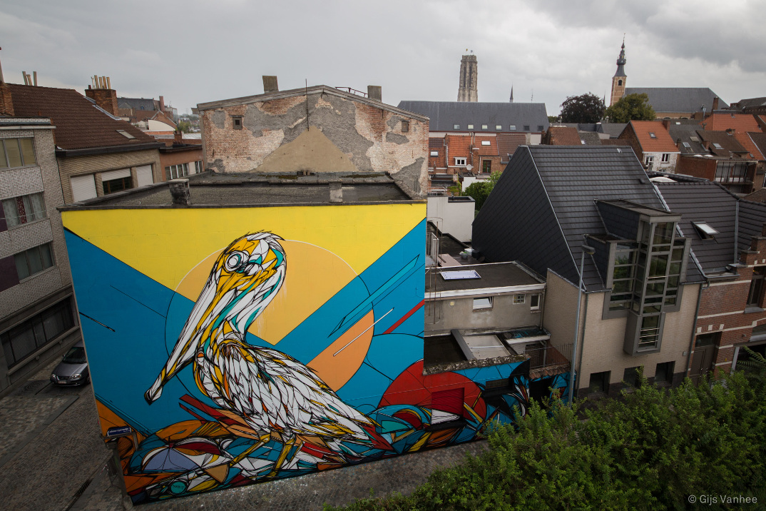 street-art-animali-dzia-13