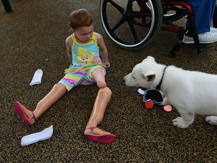 bambina-3-anni-piedi-amputati-cucciolo-cane-senza-zampa-4