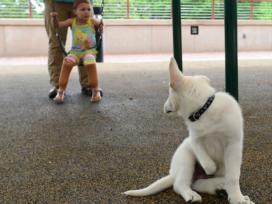 bambina-3-anni-piedi-amputati-cucciolo-cane-senza-zampa-7