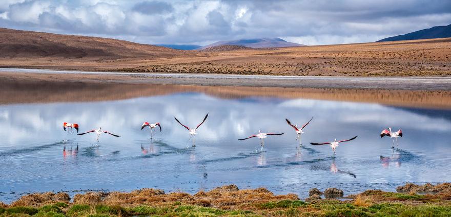 bolivia-paesaggi-naturali-fotografia-antony-harrison-19