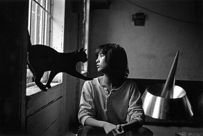 Maya Lin Ed Il Suo Gatto