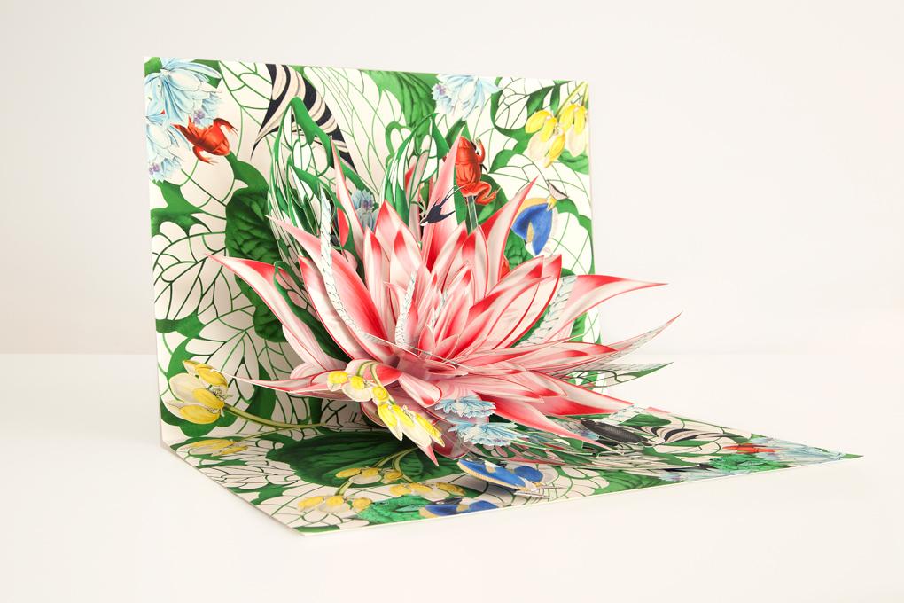 Sognanti pop up e illustrazioni 3d di carta reinterpretano la magica bellezza della natura keblog - Cosa sono le finestre pop up ...