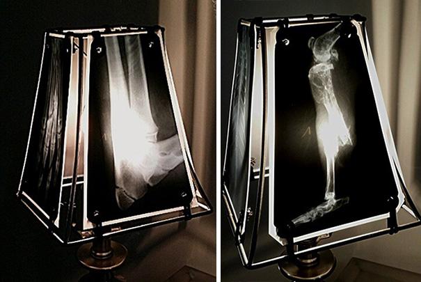 raggi-x-radiografie-animali-lampade-paralumi-veterinaria-oncologa-etsy-3