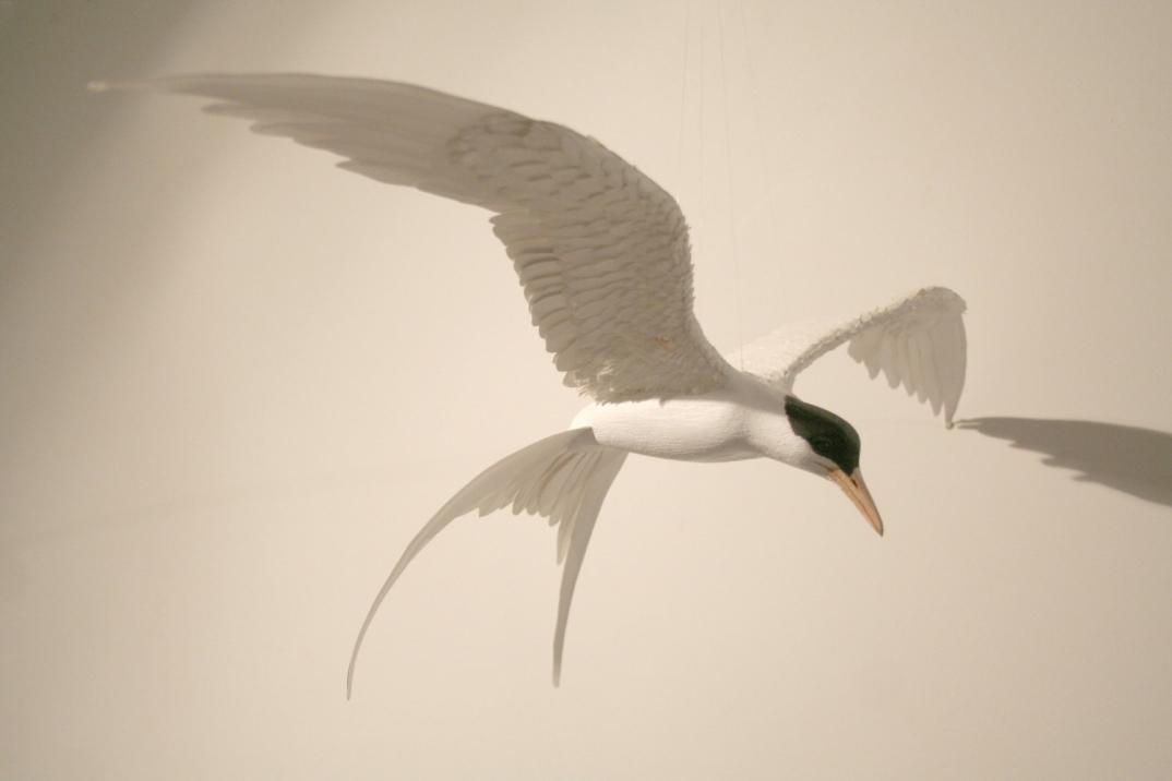 sculture-uccelli-finti-realistici-carta-Zack-Mclaughlin-01