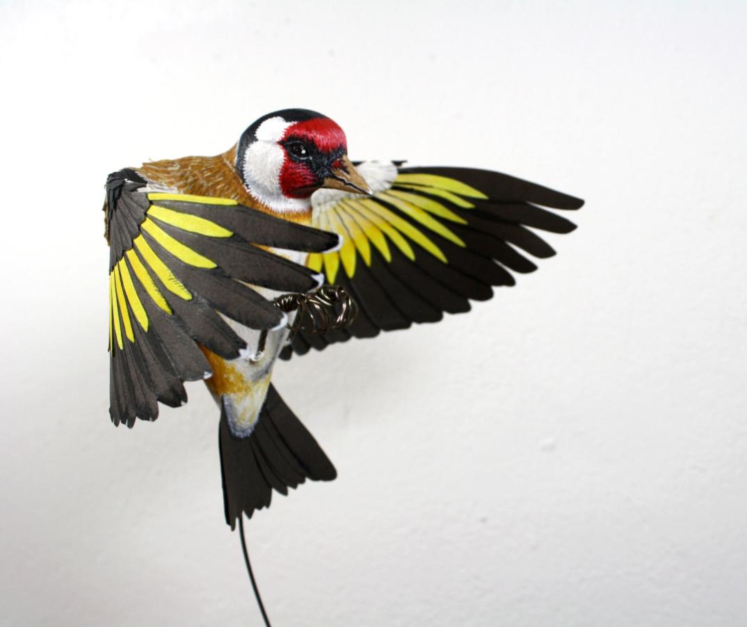 sculture-uccelli-finti-realistici-carta-Zack-Mclaughlin-08