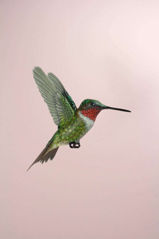 sculture-uccelli-finti-realistici-carta-Zack-Mclaughlin-12