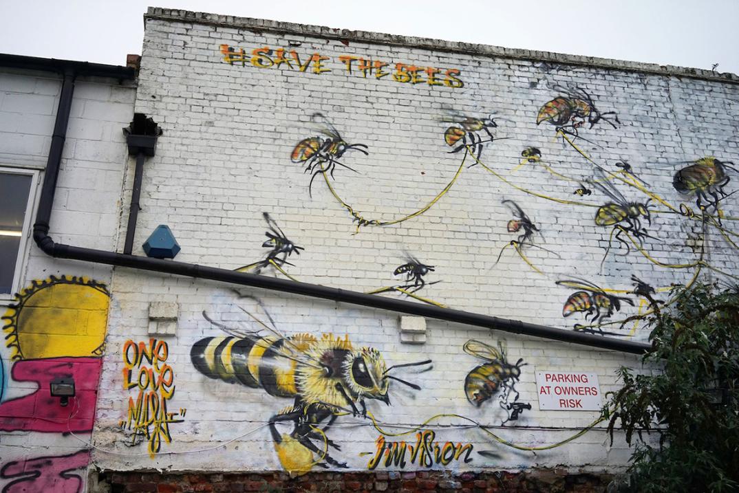 street-art-api-save-the-bees-Louis-Masai-Michel-02