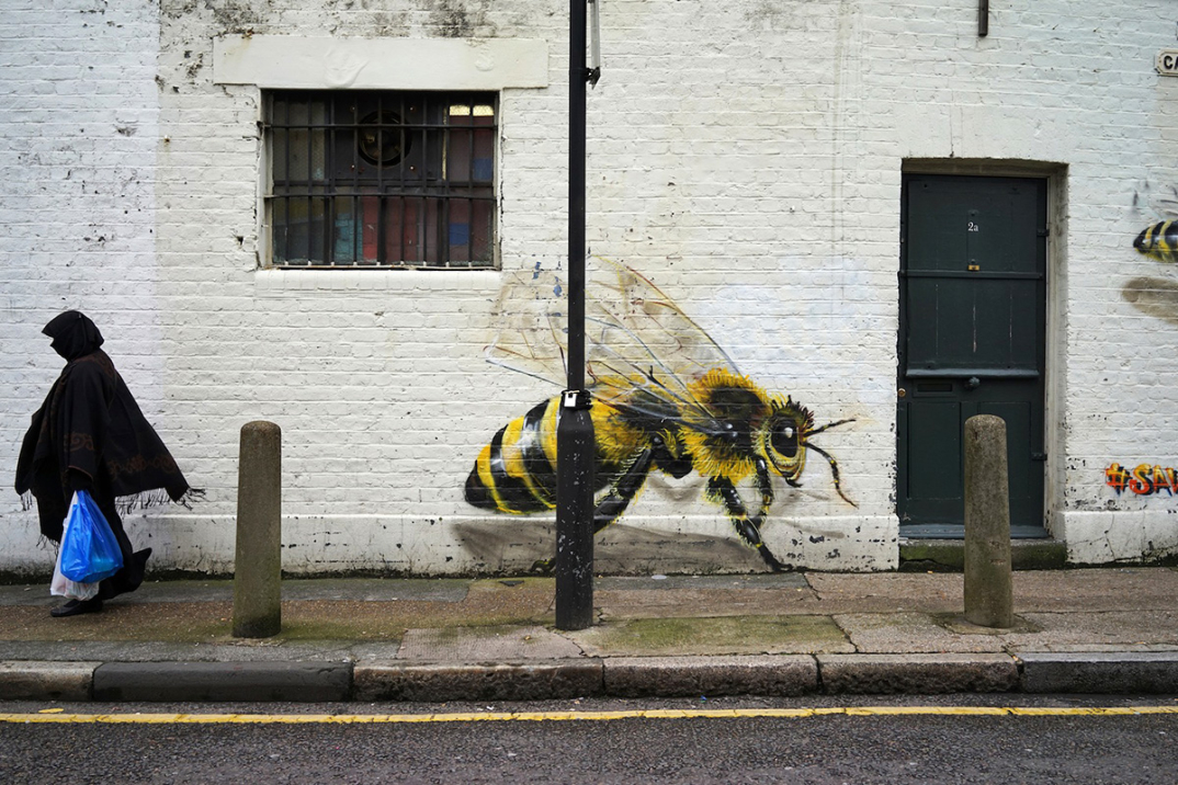 street-art-api-save-the-bees-Louis-Masai-Michel-03