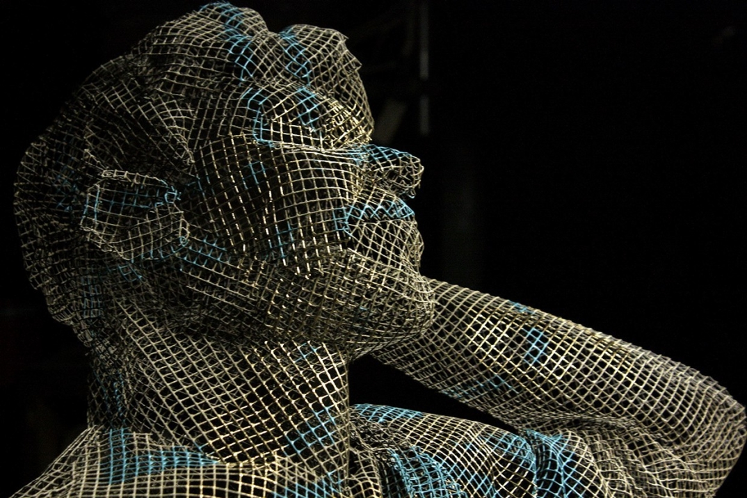 arte-scultura-filo-maglia-metallo-edoardo-tresoldi-02