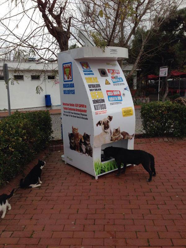 distributore-automatico-cibo-per-cani-in-cambio-di-bottiglie-istanbul-05