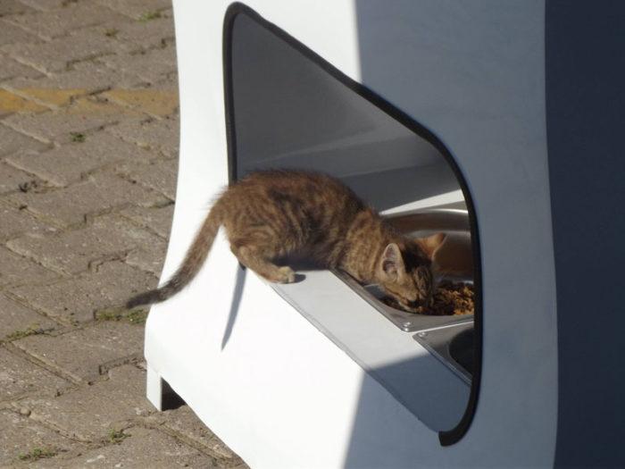 distributore-automatico-cibo-per-cani-in-cambio-di-bottiglie-istanbul-09