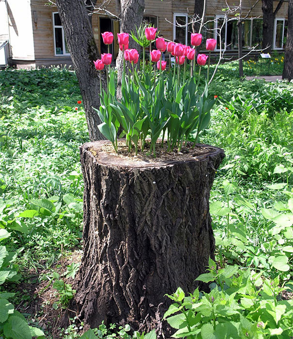 Fioriere giardino tronco albero 25 keblog for Idee per creare un giardino