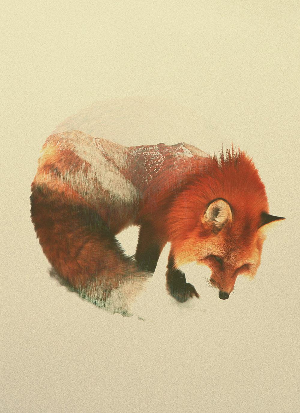 foto-doppia-esposizione-fotografia-animali-andreas-lie-04
