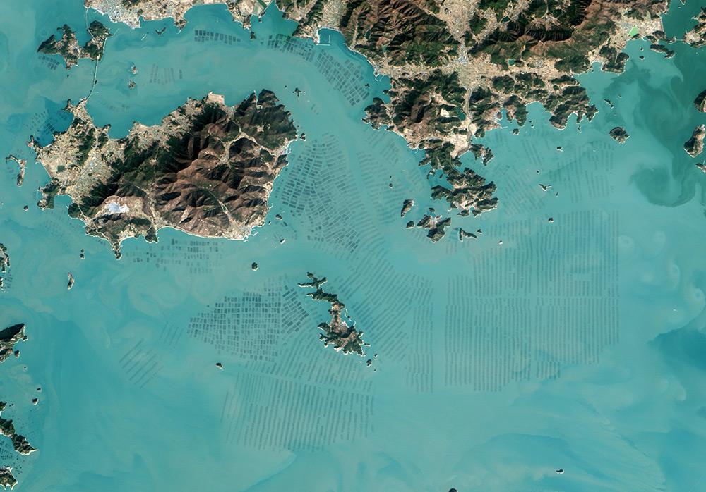 foto-satellitari-piantagioni-di-alghe-corea-del-sud-nasa-2