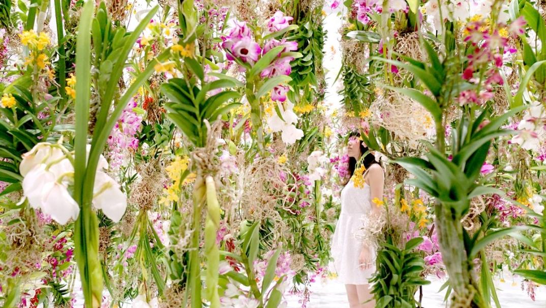 giardino-fiori-sospeso-aria-installazione-giappone-teamlab-1