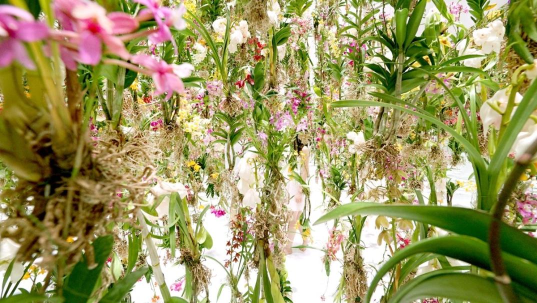 giardino-fiori-sospeso-aria-installazione-giappone-teamlab-2