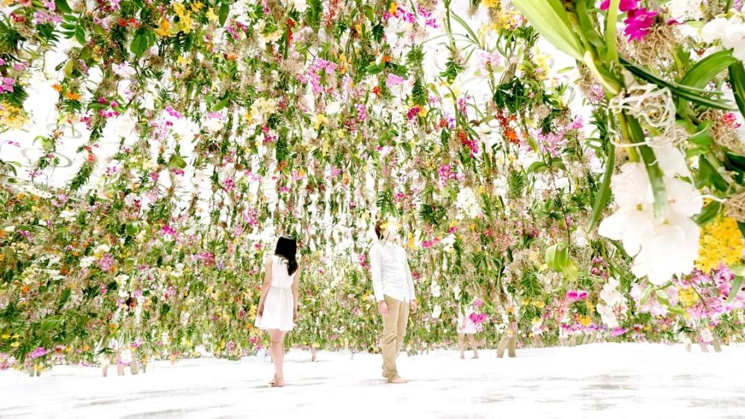 giardino-fiori-sospeso-aria-installazione-giappone-teamlab-4