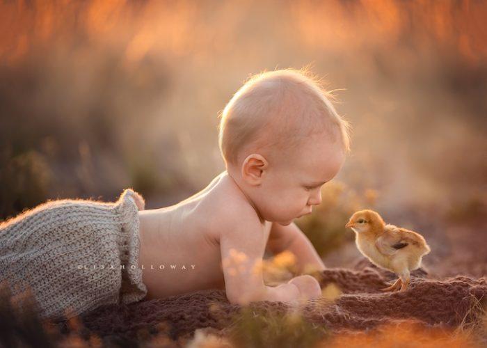 madre-fotografia-10-figli-lisa-holloway-06