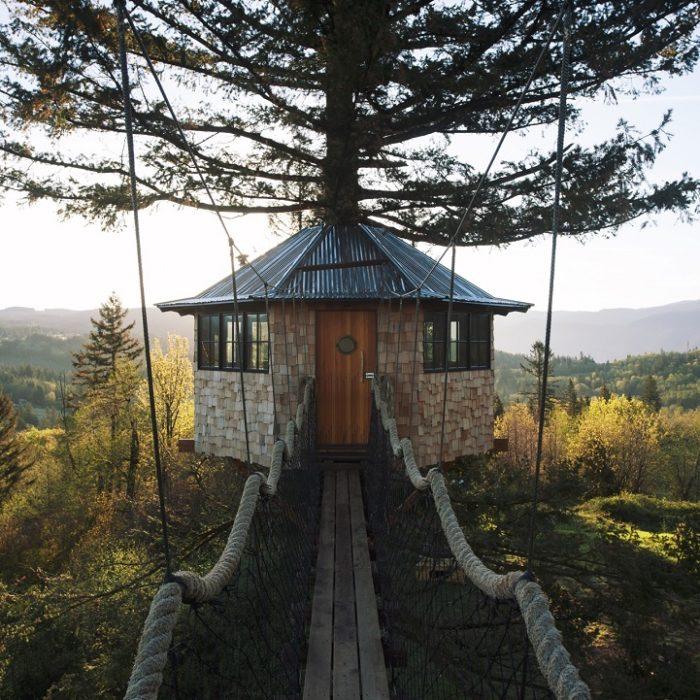 casa-su-albero-america-fotografo-foster-huntington-2