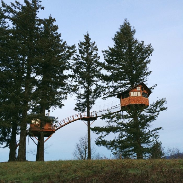 casa-su-albero-america-fotografo-foster-huntington-3