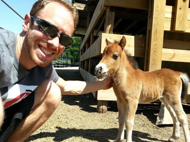 cavalli-nani-falabella-mini-pony-15