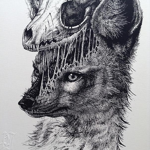 disegni-teschi-scheletri-bianco-e-nero-raccapriccianti-paul-jackson-08