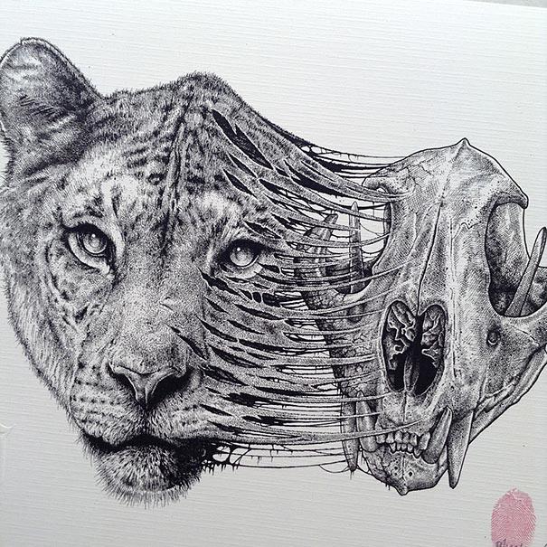 disegni-teschi-scheletri-bianco-e-nero-raccapriccianti-paul-jackson-09
