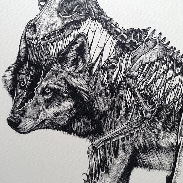 disegni-teschi-scheletri-bianco-e-nero-raccapriccianti-paul-jackson-10