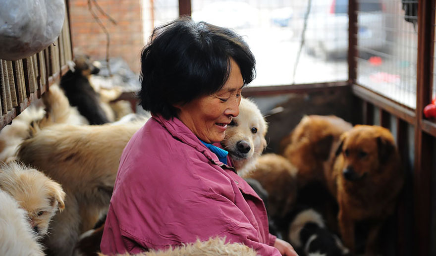 donna-salva-cani-macellati-dogs-eating-festival-cina-09