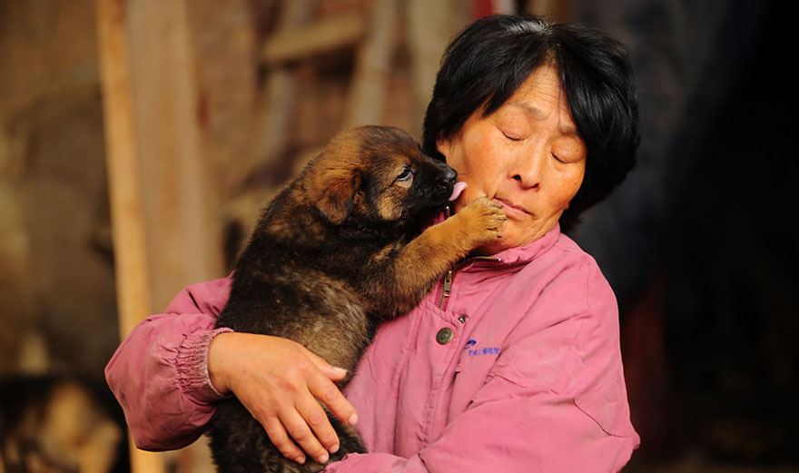 donna-salva-cani-macellati-dogs-eating-festival-cina-11