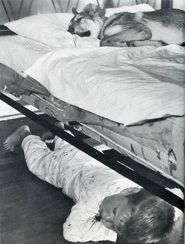 foto-di-cani-che-dormono-nel-letto-dei-padroni-21