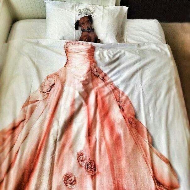 foto-di-cani-che-dormono-nel-letto-dei-padroni-27