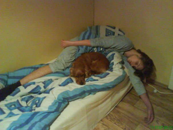 foto-di-cani-che-dormono-nel-letto-dei-padroni-40