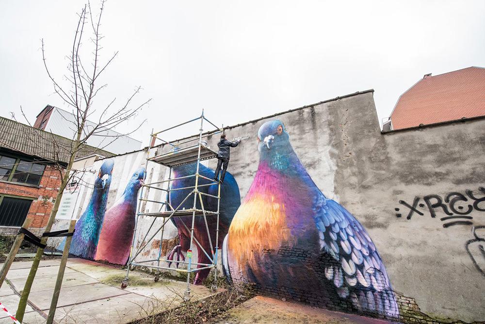 murales-imponenti-maestoso-piccione-super-a-3