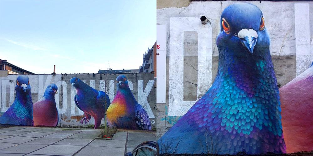 murales-imponenti-maestoso-piccione-super-a-5
